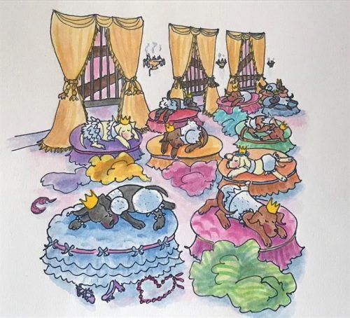 12 Dancing Princess - Dog Beds